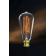 Ampoule à filament Design Stan à Baïonnette