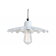 Suspension Design Ardle Blanc