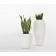 Vase Design Skin