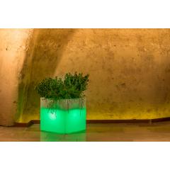 Jardinière lumineuse Design Cube