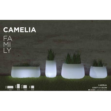 Camélia Family, pots et jarres lumineuses et solaires Led ou couleur