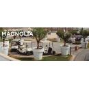 Magnolia, Pot couleur ou lumineux solaire