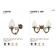 Applique simple ou double de brasserie Design Darwin