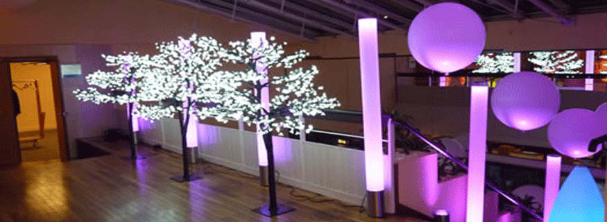 Arbres lumineux hightech diffusion for Arbres lumineux exterieur